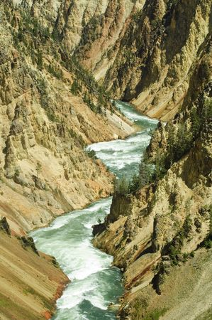 lower yellowstone falls: Gorge of the yellowstone river in Yellowstone National Park, Wyoming