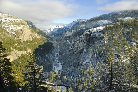 ponderosa pine winter: Yosemite valley in Yosemite National Park, California during winter Stock Photo