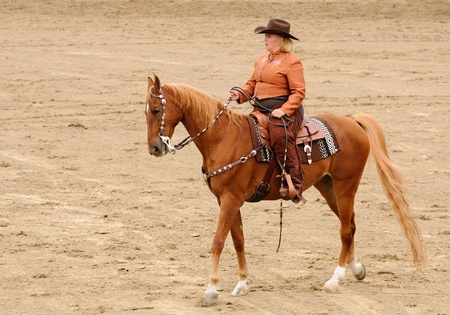 tack: Woman in western clothing riding an American Saddlebred horse in Western Tack Stock Photo
