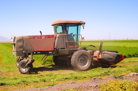 cosechadora: Cosechadoras de corte de un campo de alfalfa