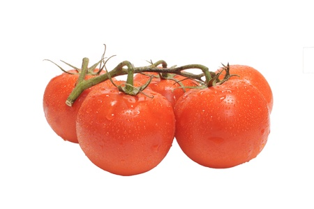 bunch of fresh tomatoes isolated on white photo