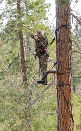 cazador: Cazador del arqueamiento en un �rbol de estilo escalera de pie con arco en apertura total, lo que demuestra una buena seguridad mediante el uso de un arn�s de seguridad