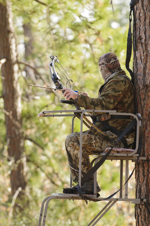 Bow hunter in a ladder style tree stand  photo