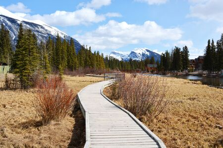 Wooden Pathway in Park of Rocky Mountains 스톡 콘텐츠