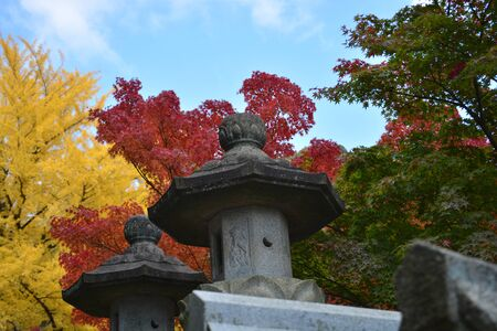 Path to Japanese temple lined with stone lanterns and colourful fall maple trees.