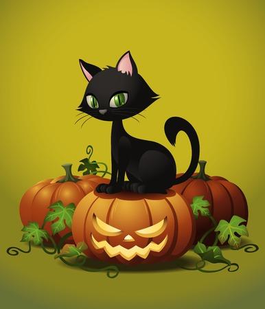 Eine hübsch schwarze Katze auf einen Halloween-Kürbis. Standard-Bild - 44029061