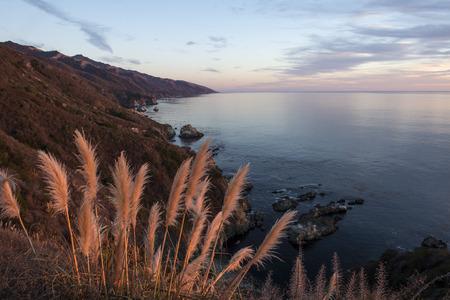 팜파스 그라스 캘리포니아에서 빅 쉬르 해안선을 따라 일몰 조명입니다.