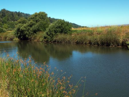 water way with both banks of grass and trees blue sky Stock Photo - 3667807