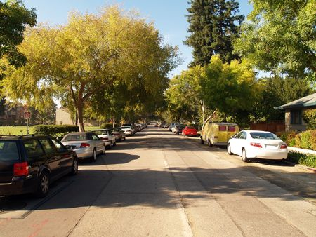 suburbia: cars parked on one way tree covered street suburbia       Stock Photo
