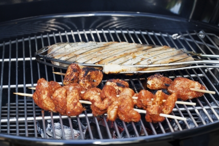 Vis en kip op de Barbecue Grill Cooking