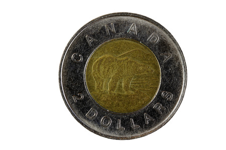 canadian coin: Bear Side Of Canadian Two Dollar Metal Coin