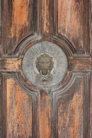 Old wooden door with lion door knocker