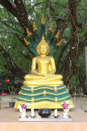 Buddha image in Thailand  Nak Prok