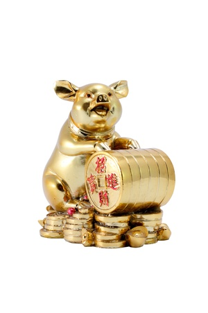 Statue of golden pig with Chinese gold coins sign of richness isolated on white background