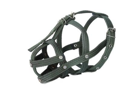 restraining: muzzle , Isolate on white Stock Photo