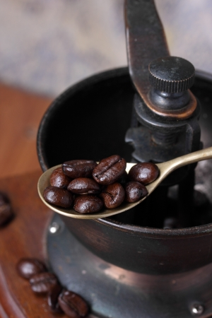 Roasted coffee beans with coffee grinder. photo