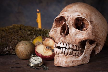 Weathered human skull, Still life photo