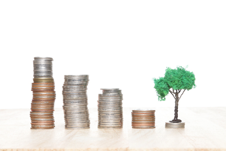 Growing tree on row of coin money, finance and banking concept