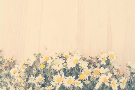 Colorful flowers with soft blur in the pastel vintage retro tone for background.