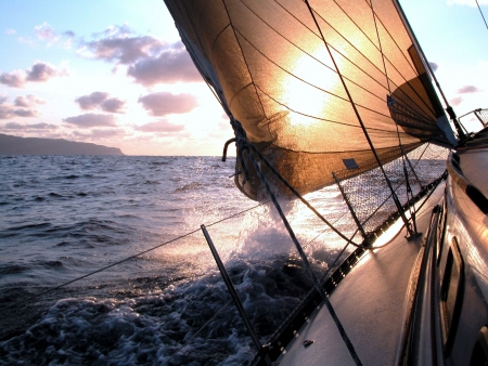 sail boat: Sailing to the sunrise during a regatta in Atlantic Ocean Stock Photo