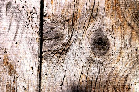 wood texture Stock Photo - 549089