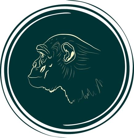 stamp design: ape head on spiral button