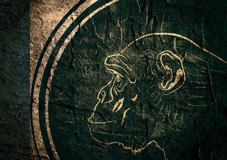 Ape head as symbol of year. Concrete wall textured background