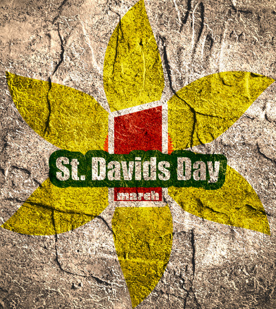 national holiday: St Davids Day  greeting card template. Wales national holiday. Narsicuss flower and text. Concrete textured