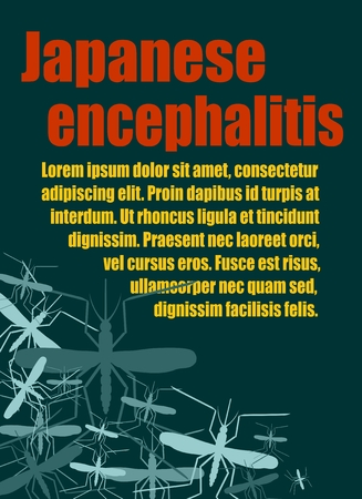 encephalitis: Modern vector brochure, report or flyer design template. Medical industry, biotechnology and biochemistry. Scientific medical designs. Mosquito transmission diseases relative. Japanese encephalitis