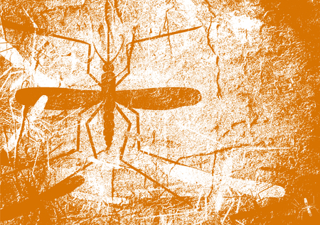 mosquitoe: Virus diseases transmitter. Mosquito silhouette. Concrete textured surface Stock Photo