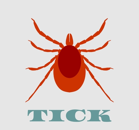 lyme: Insect silhouette.Tick parasite. Sketch of Tick. Mite. Tick isolated on white background. Tick Design for coloring book. Illustration
