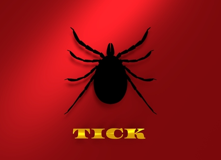 lyme disease: Insect silhouette.Tick parasite. Sketch of Tick. Mite icon. 3D rendering