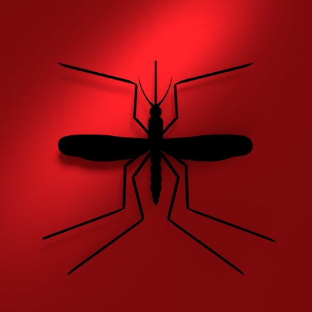 mosquitoe: Virus diseases transmitter. Mosquito silhouette. 3D rendering