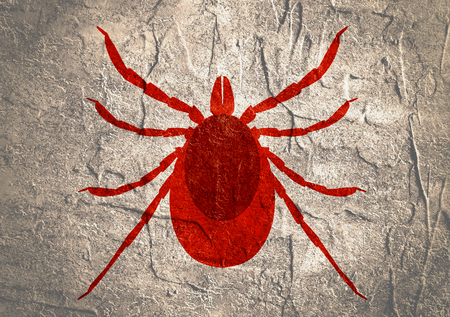 lyme disease: Insect silhouette.Tick parasite. Sketch of Tick. Mite icon. Concrete textured