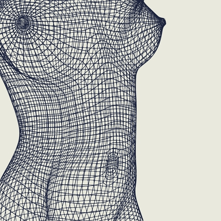 Polygonal female breast. Wire frame style design.