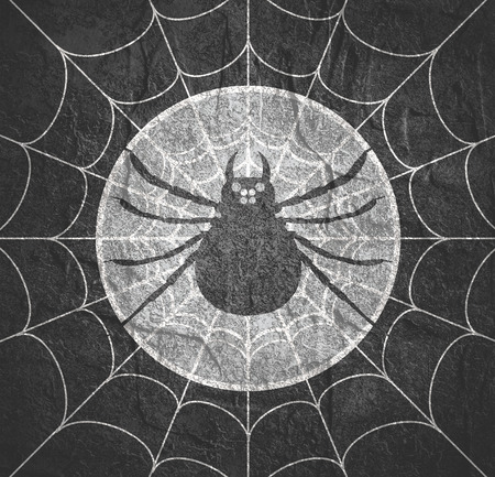 Cobweb background. Spiderweb for Halloween design. Spider web elements, spooky, scary, horror halloween decor. Hanging spider Stock Photo