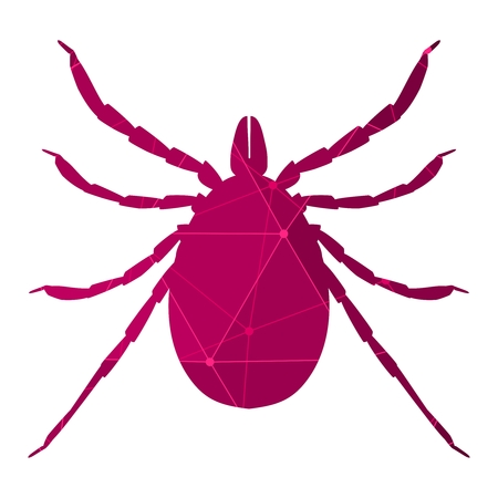 Insect silhouette.Tick parasite. Sketch of Tick. Mite illustration. Connected lines with dots.