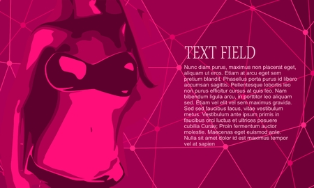 Beautiful sexy fitness girl. Pretty fit woman posing. Magenta lingerie. Connected lines with dots background. Field for text