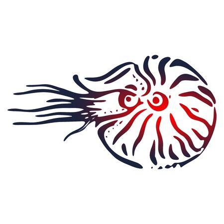 Seashell nautilus. Doodle sea shell. Marine life ornament Banco de Imagens - 130055336