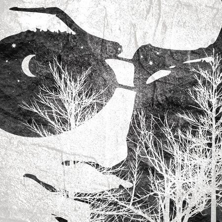 Face front view. Elegant silhouette of a head textured by tree branches. Double exposure. Moon and stars