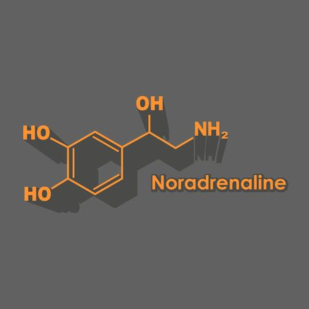 Chemical molecular formula hormone noradrenaline. Infographics illustration. Illusztráció