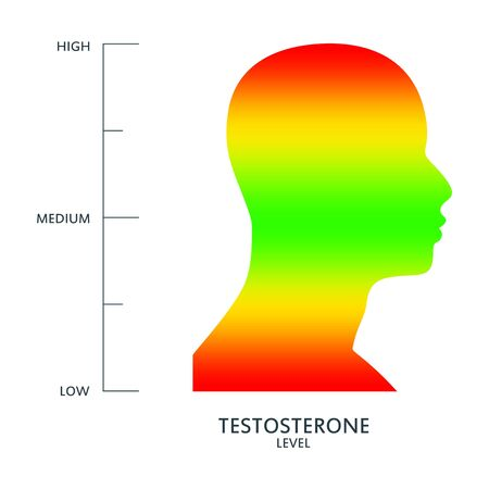 Hormone testosterone level measuring scale. Health care concept illustration. Head of man silhouette. From red to green scale.