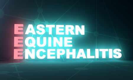 Acronym EEE - Eastern Equine Encephalitis. Medical conceptual image. 3D rendering. Neon bulb illumination Stock Photo