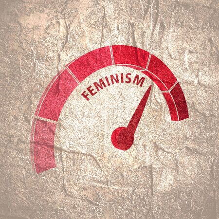 Indicator with arrow from pink to dark pink. The measuring device icon. Feminism word.