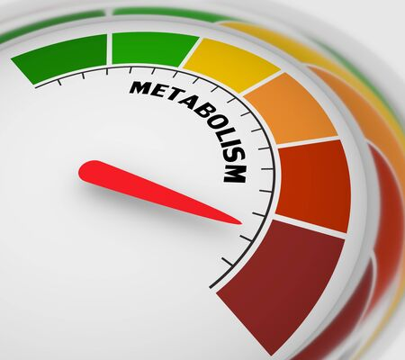 Metabolism level scale with arrow. The measuring device icon. Sign tachometer, speedometer, indicators. Infographic gauge element. 3D rendering