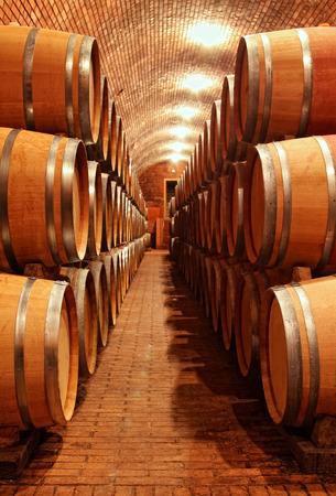 Wine barrels in cellar