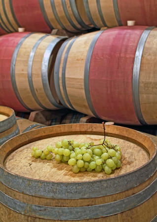 Bunch of grapes on the barrel photo