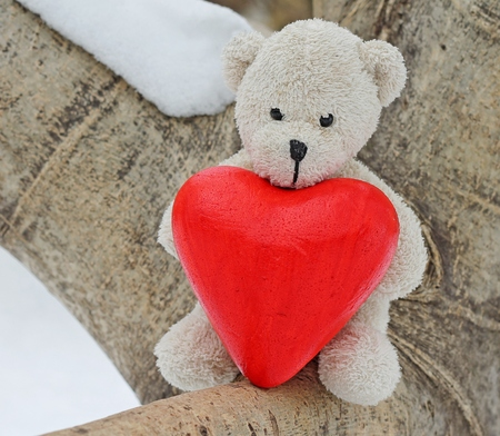 february 14th: Teddy bear is sitting on the tree Stock Photo