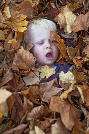 A little boy lies in leaf pile