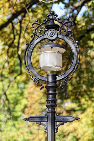 Old street lamp in nature